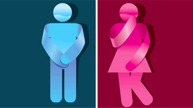 urinimii.png